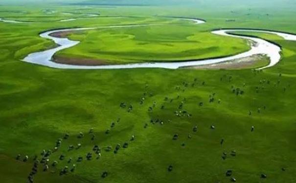 畜牧饲养APP开发,畜牧业APP
